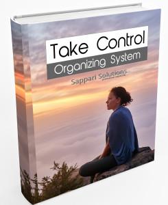 Take Control System
